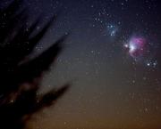 A Constelação de Orion (1)