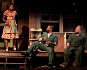 14artsbeat-fences-blog480